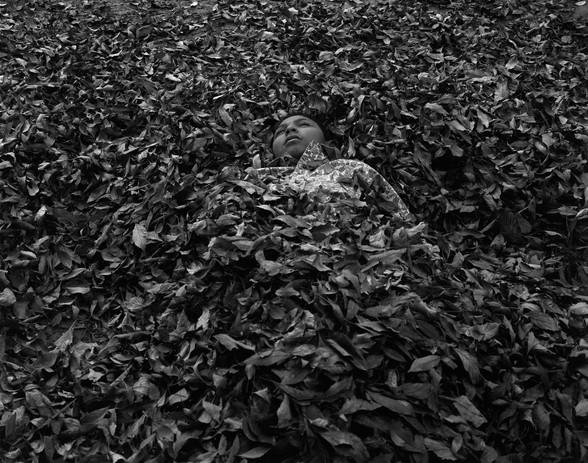 Daniel Ramos Pilo in Leaves