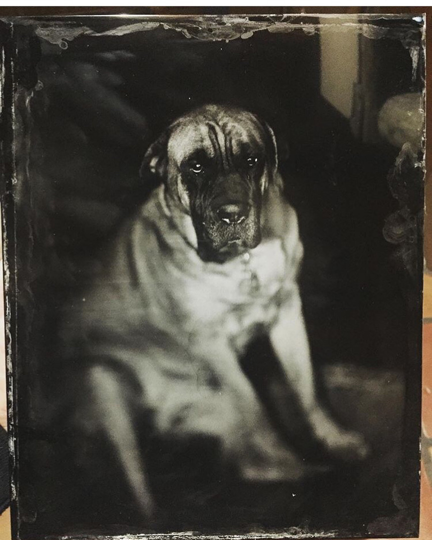 "8""x10"" tintype from a portrait studio session at Foto Forum"