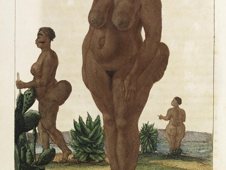 Black Bodies on Show: The Case of the Hottentot Venus