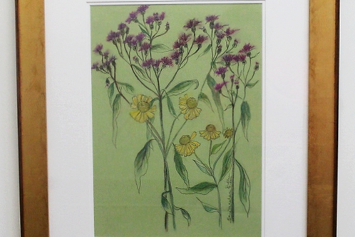 Framed signed original of Ironweed and Sneezeweed