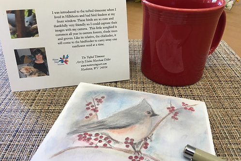 Note Card: Tufted Titmouse