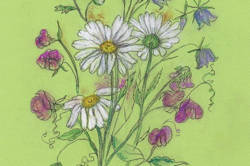Wildflower Prints: Daisies