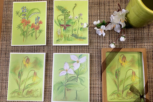 Boxed Set of 4 Spring I Note Cards with envelopes