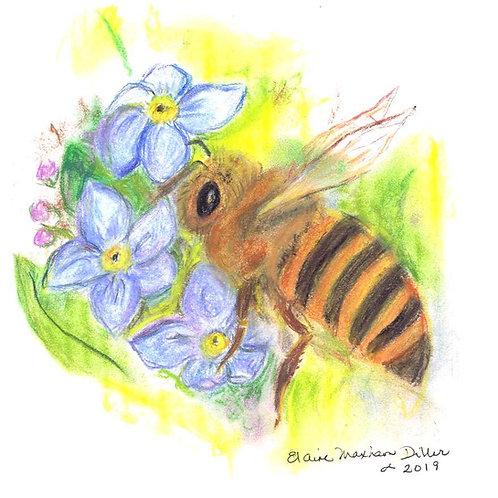 Wild & Wonderful Print: Honey Bee