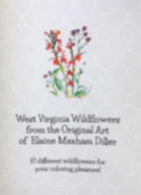 WV Wildflower Coloring Book.jpg