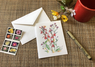 Cardinal Lobelia & asters Note Card