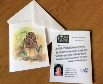 Morel Mushroom Note Card