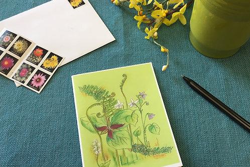Note Card: Fiddle Head Ferns & Trillium