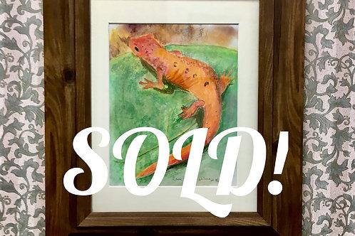 Original red salamander