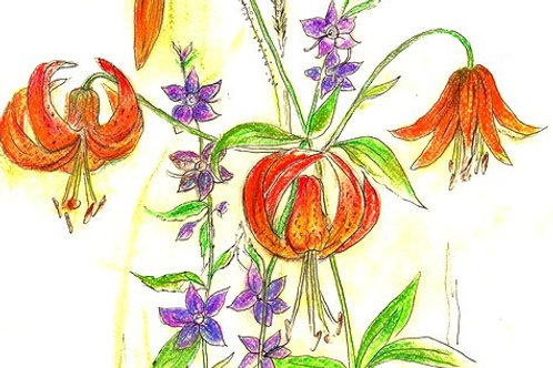 Turks Cap lily with Tall Bellflower