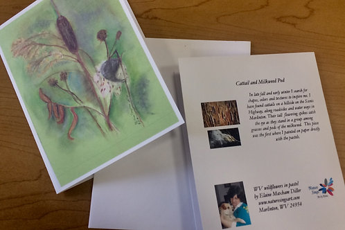 Note Card: Cattail & milkweed pod