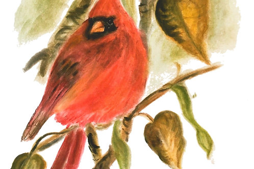 Wild & Wonderful Prints: Northern Cardinal