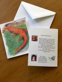 Northern Red Salamander Note Card