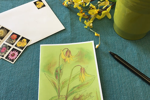Note Card: Yellow Trout Lily