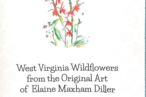 Coloring Book: Wildflowers