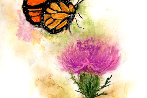 Wild & wonderful print: Monarch Butterfly
