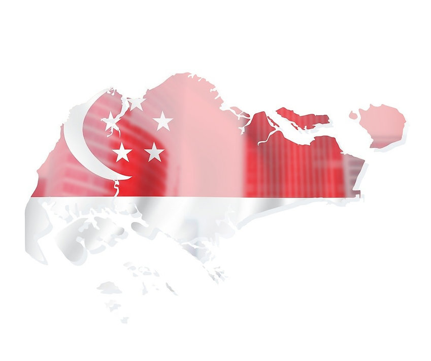 map-of-singapore-with-flag-vector-500199