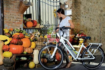 bici elettricca a pedalata assistita mod. cortina
