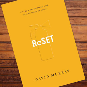 ReSET (Book Review)