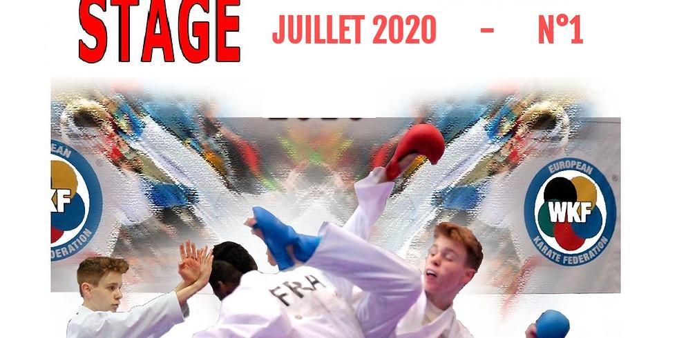 STAGE d'ÉTÉ  Juillet 2020 (n°1)