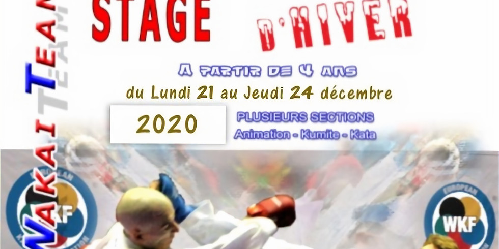 STAGE d'HIVER 2020