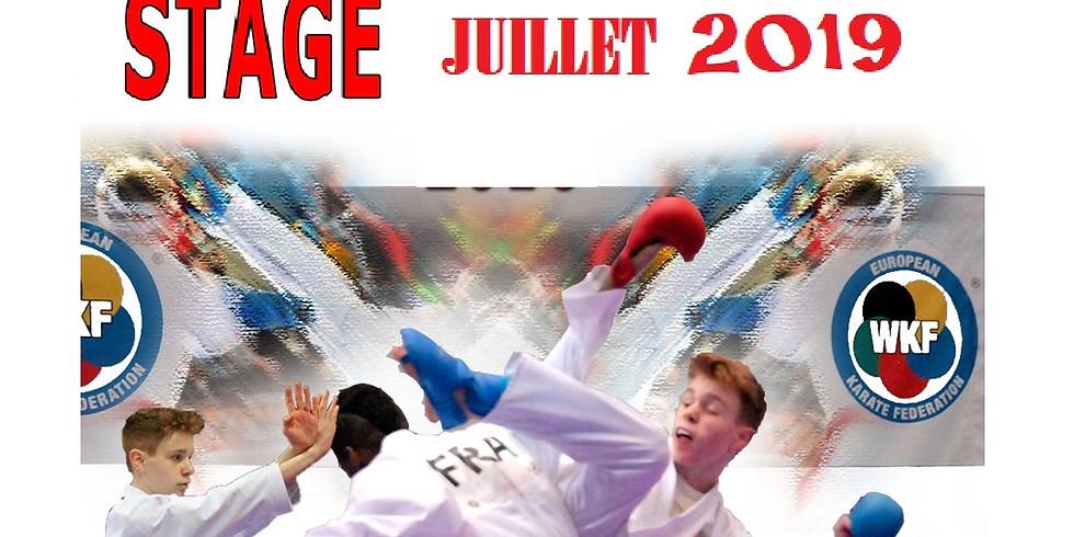 STAGE d'ÉTÉ  Juillet 2019 (1)