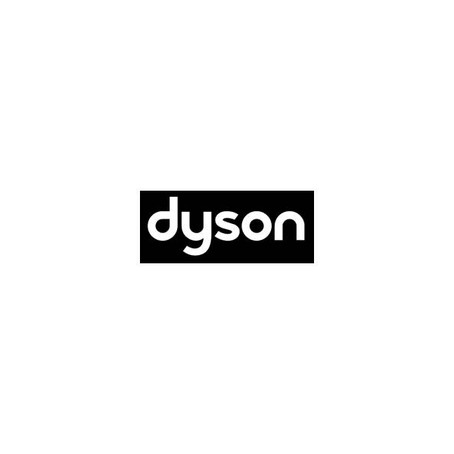Dyson - SEA James Dyson Foundation Manager, Singapore (29 Jan)