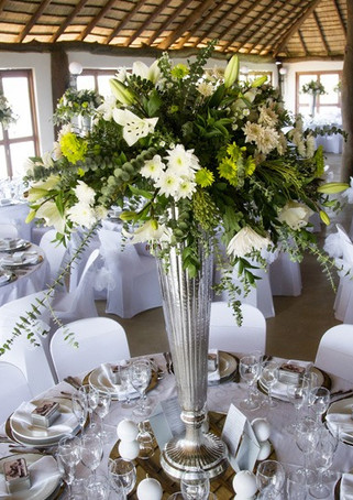 Mount Aqua - Wedding Venues