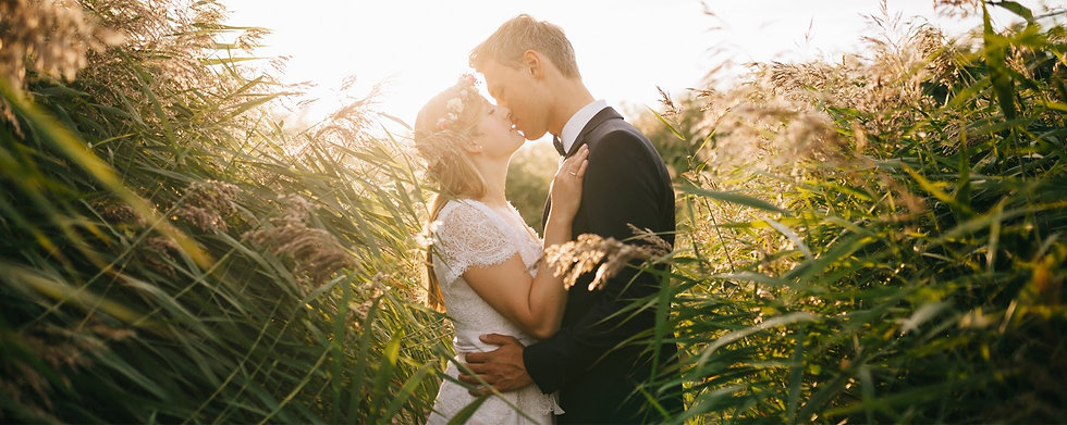 Bride and groom kissing in a field of ta