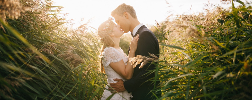 Young bride and groom kissing romantically surrounded by a field of tall grass