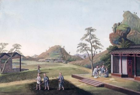 Ten Scenes Illustrating the Growing and Processing of Tea種茶製茶圖十幅, c. 1800s.Gouache on paper. From the UMAG collection