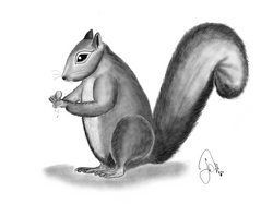 FatSquirrel