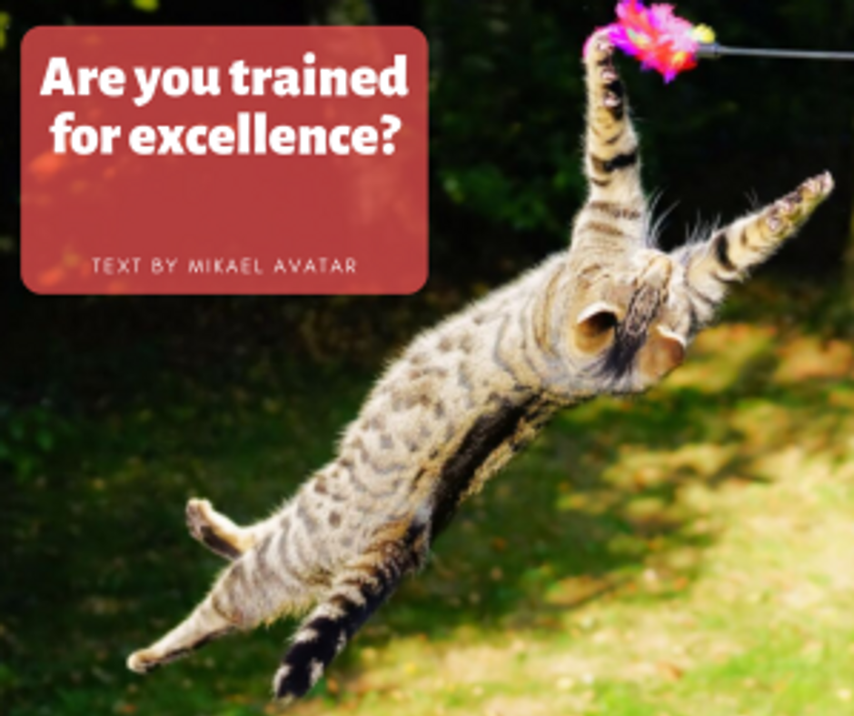 Are you trained for excellence_