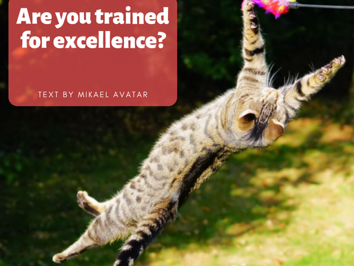 Are you trained for excellence?