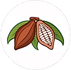 cacao-cocoa-beans-vector-v1-01.png