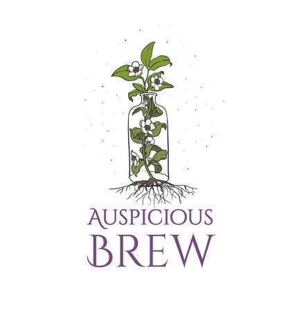 Auspicious Brew Logo