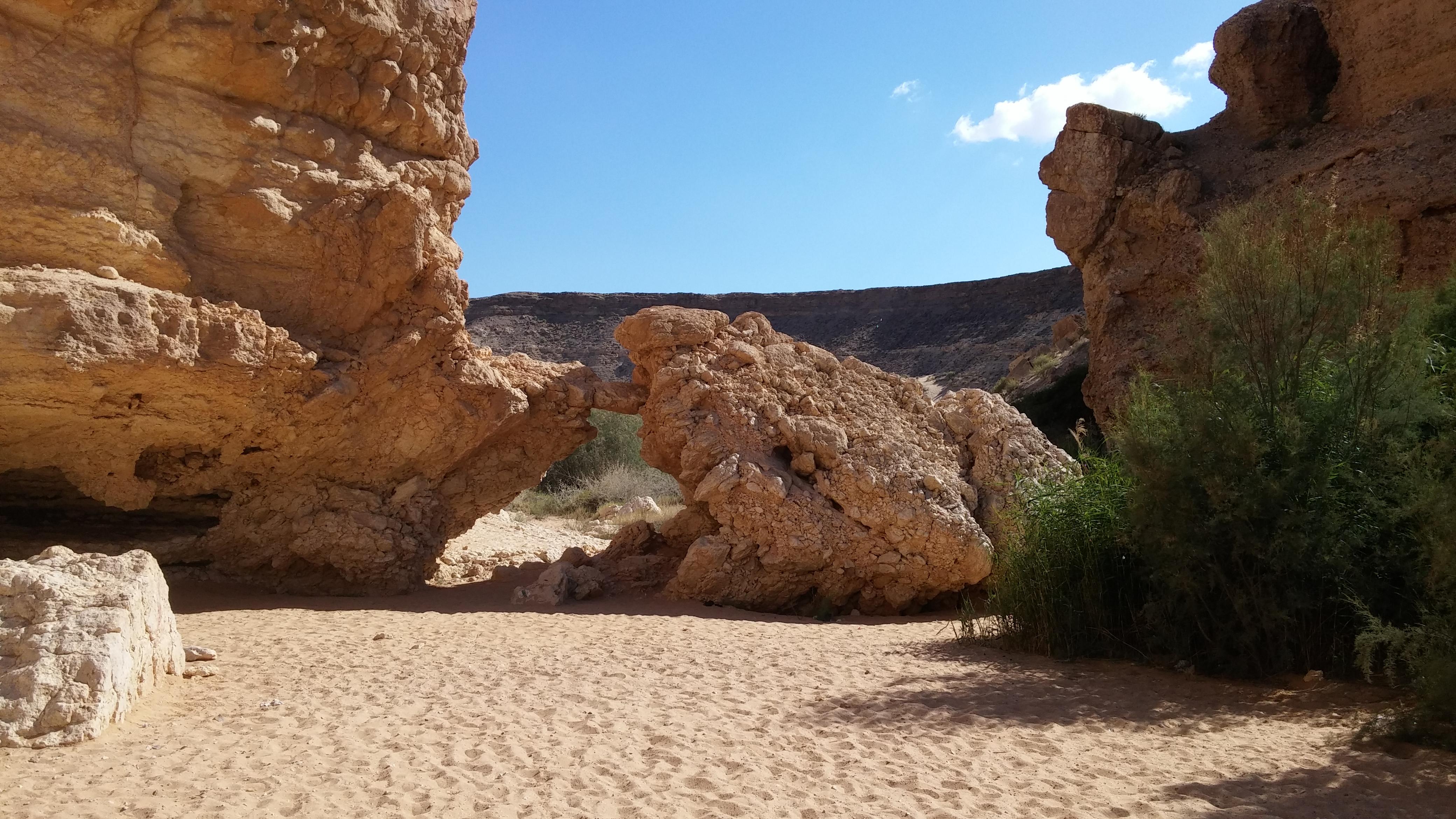 זכרונות מהרפתקת כתיבה במדבר