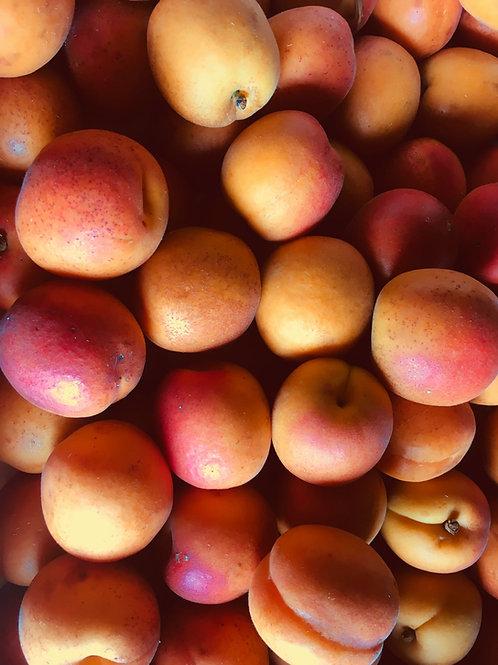 """Confiture """"Abricots de l'étagère du haut"""""""