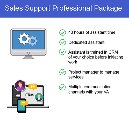 Sales Support Professional