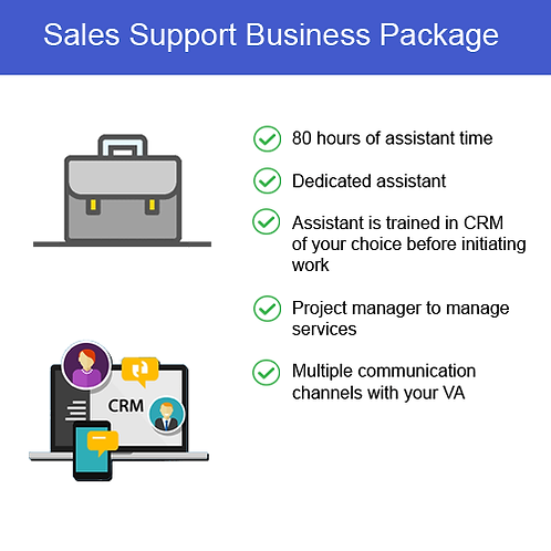 Sales Support Business