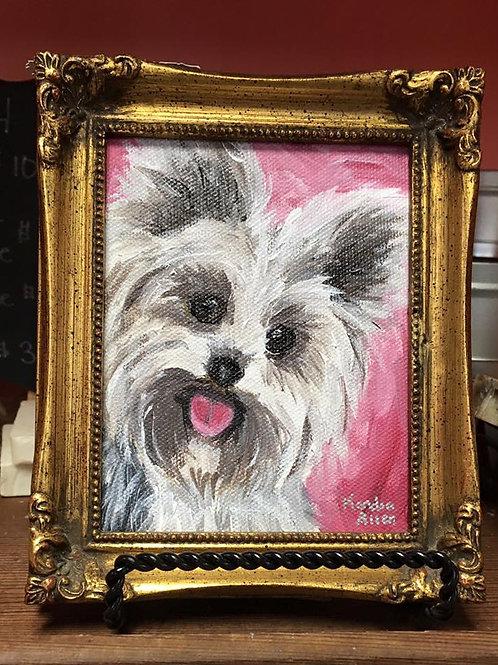 precious pet portrait