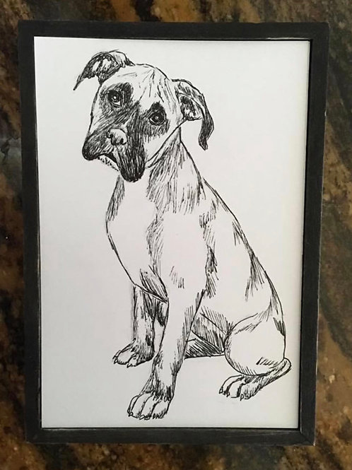 Ink drawing pet portraits