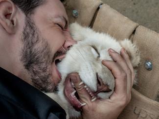 Eu mordi o 1o Leão Branco nascido no Brasil!
