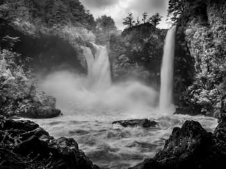 Bosque Encantado de Huilo Huilo - Aventuras, Fotografia e Animais Raros