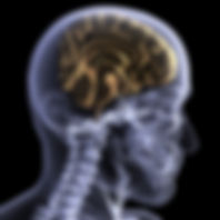 Erskineville Massge Therapy, Remedial massage near Erskineville, Massge near Erskineville, my remedial therapist,Craniosacral therapy near Erskineville,Craniosacral Therapy