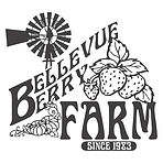 BerryFarm.jpg