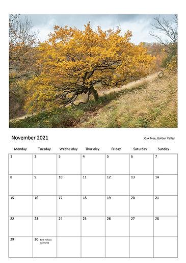 2021_Calendar_NovOnly.jpg