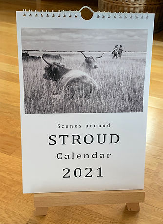 Calendar2021_1500Etsy_IMG_7868.jpg