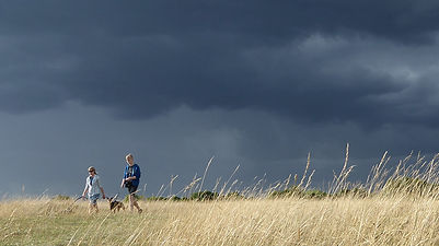 Cloud2_walkers_dog_grass_RodboroughCommo