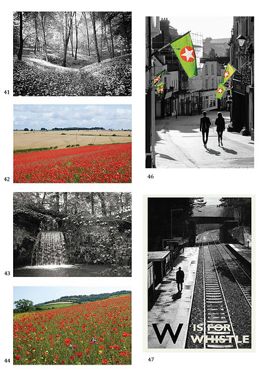 GreetingsCards_Portrai_BW_Poppies.jpg